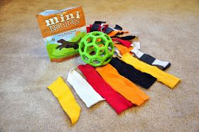 """Leopold's Crate: Fun activity for dogs who like to """"disembowel"""" their stuffed animal toys."""