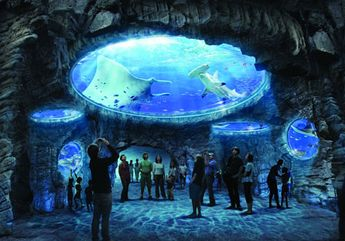 One of the largest aquariums in the world is in Hong Kong. I have wanted to visit this aquarium since watching its construction on a documentary. #JSCathay #Jetsetter Jetsetter.com