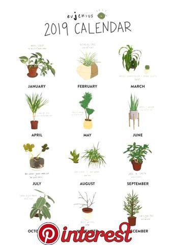 2019 My Famous Plants Calendar | Herbs | Tall indoor plants, Plants, Indoor plants   2019 My Famous Plants Calendar | Herbs | Tall indoor plants, Plants, Indoor plants