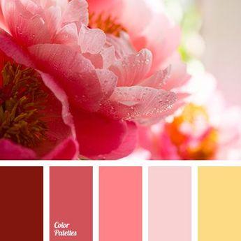 Color Palette #2676