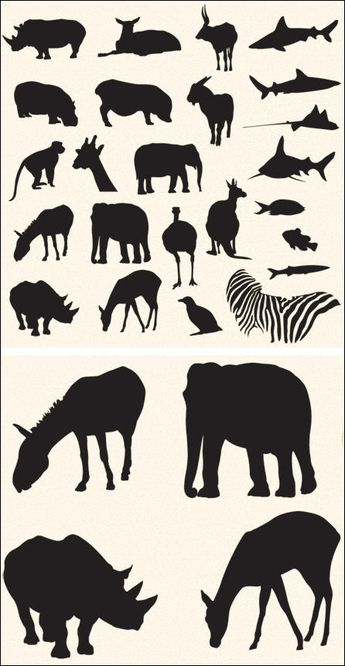 Vector Pack – Safari and Zoo Animals