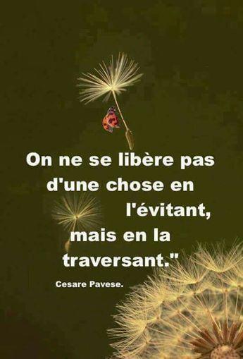 #citation #résilience #epuisementmaternel #burnoutmaternel #mamanfatiguee #mumtired #mumlife #proverbe #résilience