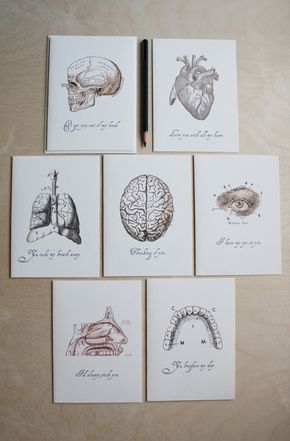 """Anatomical love note - """"Love. . .anatomically speaking"""" series // anatomical drawings // quirky love notes"""