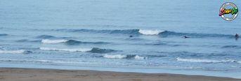 08/09/19 Surf Check