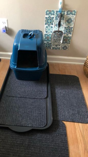 Kitty Area Budget Friendly Spruce Up