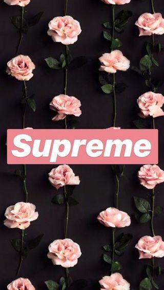 #background #cute #supreme #pink #followforfollow #followmeplease