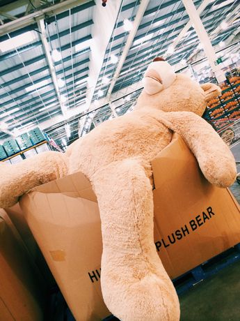 Costco teddy bear , who ever buys me one of these is gonna make me real happy ;)