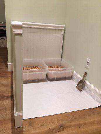Reader DIY Litter Box Area: Kitty Potty Project for Ragdoll Cats