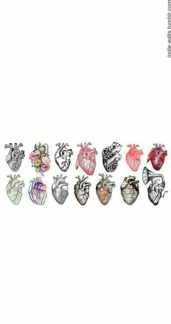 Tattoo heart anatomical sketch 54+ Ideas