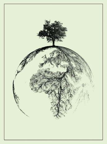 DNA:o livro das raízes humanas