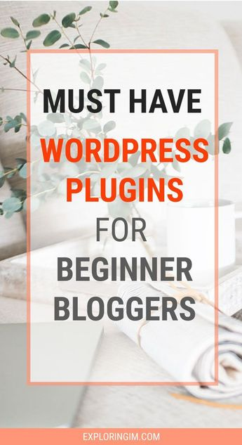 Must-Have WordPress Plugins For Beginner Bloggers