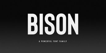 Bison Font Download #font #typeface #typography
