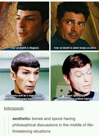 "18 Times ""Star Trek"" Fans Were The Funniest Part Of Tumblr"