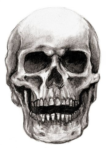Skull Drawing - 75 Picture Ideas