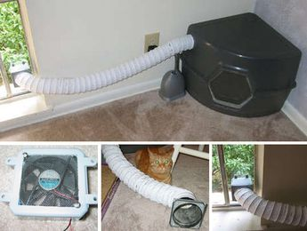 How to Tackle Litter Box Odors