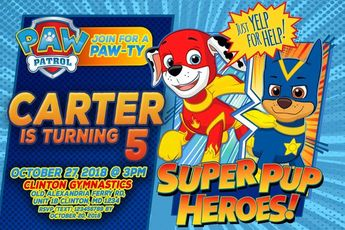 Paw Patrol Mighty Pups Dvd Digital Copy