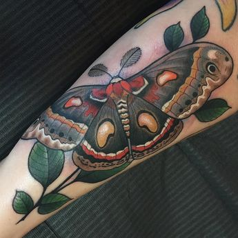 moth tattoo by nstegall made at redletter 1 nickstegall redletter1 tattoo