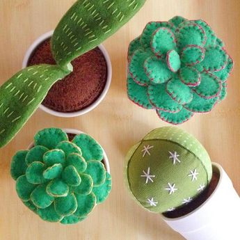 """""""Potted, plush plants - by far, the easiest to care for."""""""