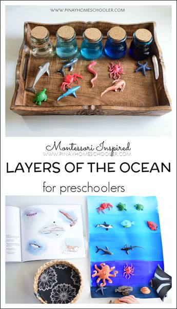 Montessori Inspired Layers of the Ocean for Preschoolers