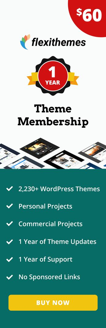 Buy a WordPress Theme