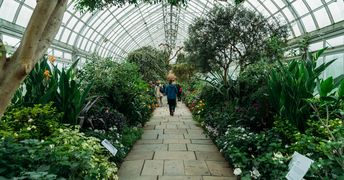 Opinion | Oliver Sacks: The Healing Power of Gardens - The New York Times