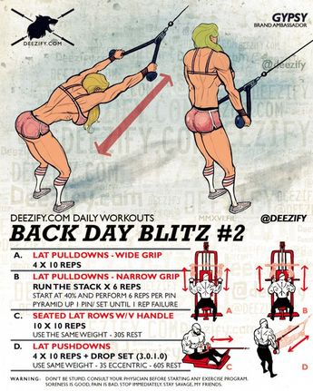 Workout: Back Day Blitz #2