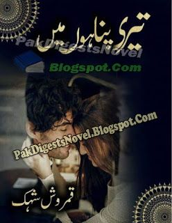 Aanchal Digest January 2019 [PDF Download]  Ishaq safar Ki