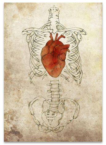 身体を支える心臓。 身体の重心にあって、 健康をつかさどる。