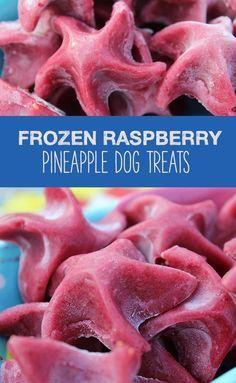Pet Frozen Raspberry Pineapple Dog Treats