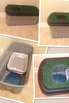Cat Litter Box Enclosures for 2020