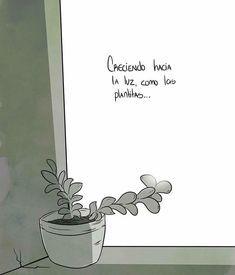 🌱🌞🙌🏼 #soyunamujerholistica #mujerholistica #bienestar #luz #light #crecer #creciendo #reflexion #felizlunes