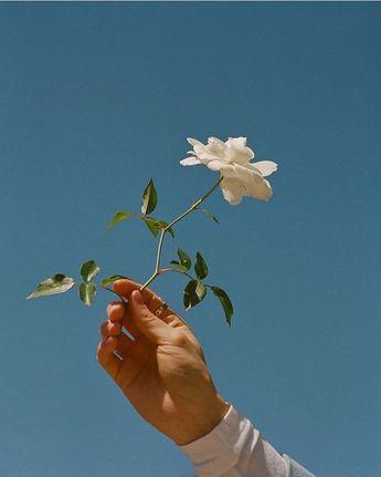 single lil bloom boy