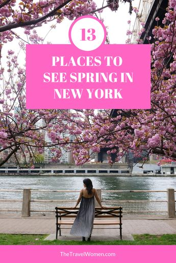 11 Best Spring Places to See Cherry Blossoms in NYC