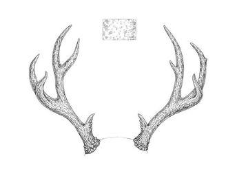 Antler silhouette clip art set - deer, moose, elk, roe ant