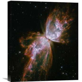Global Gallery Butterfly Nebula Photographic Print on Wrapped Canvas