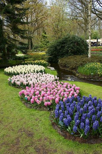 Beautyful and Creative Flower Bed Ideas to Try