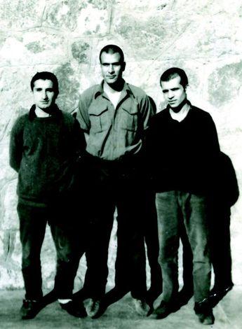 Üç fidan