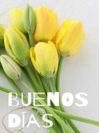 BUENOS DÍAS, BUENAS TARDES, BUENAS NOCHES - MI MUNDO SOÑADO - Gabitos