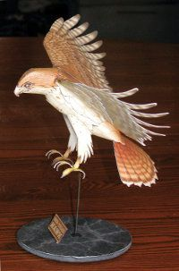 Red-tailed Hawk paper model.  Follow the link to find the pattern (pay to download).