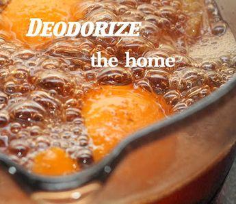 do it yourself divas: DIY Natural Home Deodorizer