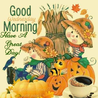 Happy Wednesday friends 🙏🏡☕👪🐈🐕🍁🍂🍊🍎🎃🌽🐎🌄 ~~~~~~~~~~~~~~~~~~~~~~~~~🍁🍂 #the_simple_things_ 🍁🍂 #happywednesday #goodmorning #fall #autumn #harvest #garden #pumpkins #coffee #tea #leaves #happy #goodafternoon #goodevening #happythanksgiving #blessings