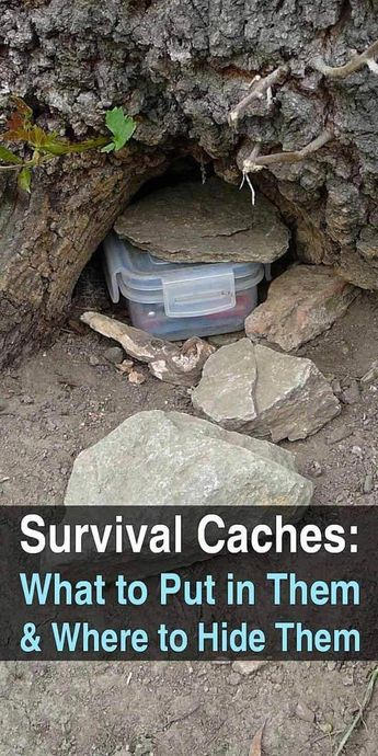 Please click here for more information about survival skills. #survivalskills