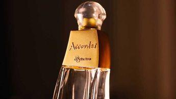 7 perfumes femininos brasileiros para se orgulhar