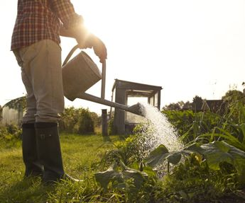 9 Reasons Gardening Is The Ultimate Mind-Body Workout
