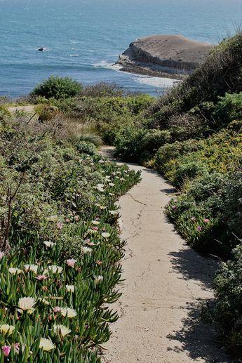California Dreaming | California Aesthetic | Colorful Beach | Summer Aesthetic  | Santa Cruz | Davenport | Pacific Coast Highway | PCH | Highway One | California | Mary O Photography | California Photographer | Bay Area Photographer | San Jose Photographer