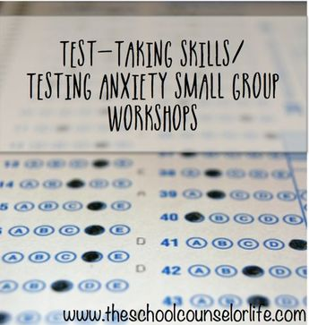 School Counselor Test Taking Skills / Testing Anxiety Small Group Workshops