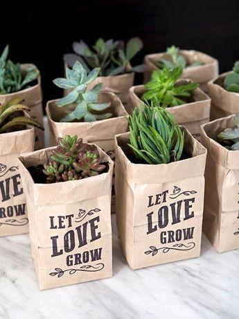 20+ Creative DIY Succulent Ideas For Your Garden