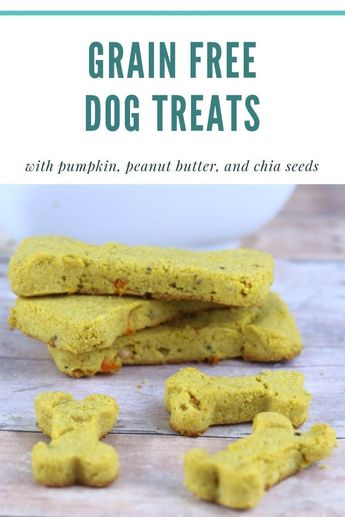 Grain Free Dog Treat Recipe With Flax Seeds, Pumpkin