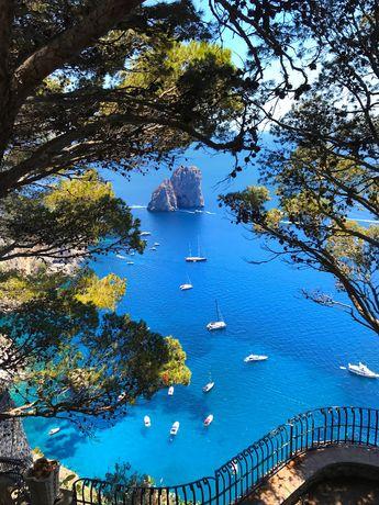 mediterraneancore