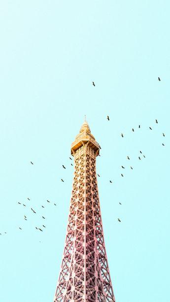 Paris Eiffel Tower Birds Colorful iPhone 6 Plus HD Wallpaper